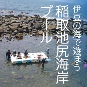 伊豆の海で遊ぼう!東伊豆町 稲取 池尻海岸+プール レベル:幼児~小学生3年生