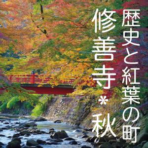 歴史と紅葉の町「修善寺」(秋)