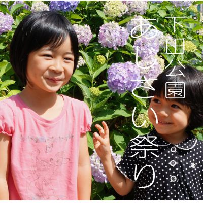 今が見頃!下田公園 あじさい祭り 6月中は楽しめそう☆