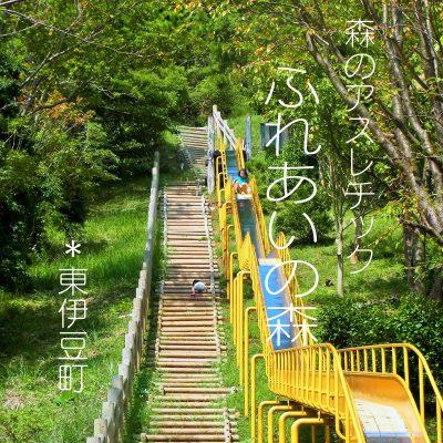 森のアスレチック ふれあいの森・ツリーハウス クロスカントリー in 伊豆 東伊豆町 稲取 無料