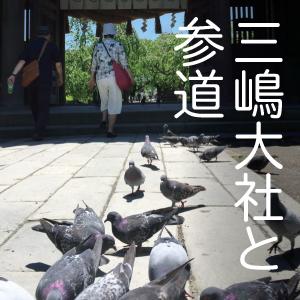 みしま・ぶらり散歩①【三嶋大社と参道】