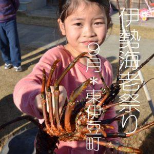 9月25日 東伊豆町 稲取温泉 伊勢エビ祭り 明日ですよ!